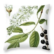 Bird Cherry Cerasus Padus Or Prunus Padus Throw Pillow
