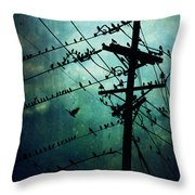 Bird City Throw Pillow