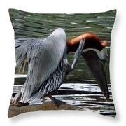 Bird Dance Throw Pillow