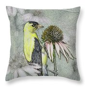 Bird Eating Seeds For One Digital Art Throw Pillow