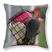 Bird Feeder Wp 06 Throw Pillow