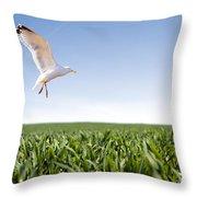 Bird Flying Over Green Grass Throw Pillow