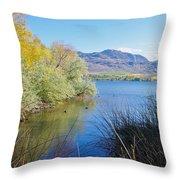 Bird Haven Throw Pillow