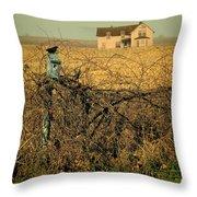 Bird House And Farm Throw Pillow
