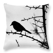 Bird In B And W Throw Pillow
