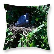 Bird In Nest Throw Pillow