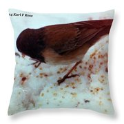 Bird In Snow 2 Throw Pillow