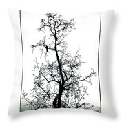 Bird In The Branches Throw Pillow