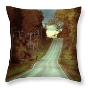 Bird In The Road Throw Pillow