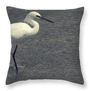 Bird In The Water Throw Pillow