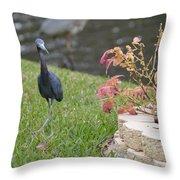 Bird In Yard Throw Pillow