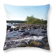 Bird Island Throw Pillow