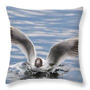 Bird Landing Throw Pillow