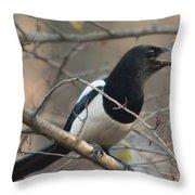 Bird Magpie Throw Pillow