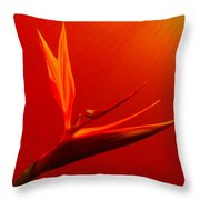 Bird Of Paradise - Flora - Flower Throw Pillow