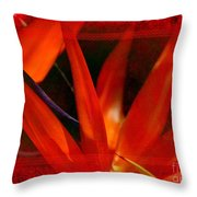 Bird Of Paradise Flower 5 Throw Pillow