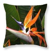 Bird Of Paradise Flowers Throw Pillow