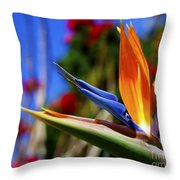 Bird Of Paradise Open For All To See Throw Pillow
