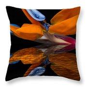 Bird Of Paradise Reflective Pool Throw Pillow