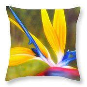 Bird Of Paradise Revisited Throw Pillow