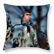 Bird On A Limb Throw Pillow