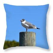 Bird On A Pole Throw Pillow