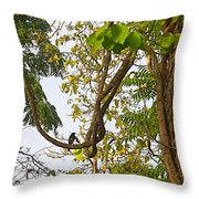 Bird On A Vine In Jungle Forest In Chitwan Np-nepal  Throw Pillow