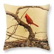 Bird On A Vine Throw Pillow