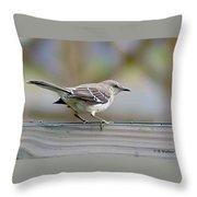 Bird On The Fence Throw Pillow