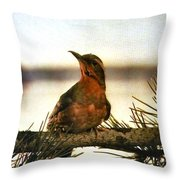 Bird On The Wire Throw Pillow