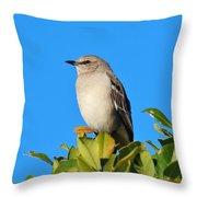Bird On Tree Top Throw Pillow