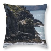 Bird Paradise On Cook Strait Throw Pillow