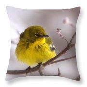 Bird - Pine Warbler - Yellow Beauty Throw Pillow
