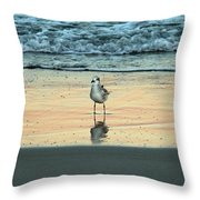 Bird Reflection Throw Pillow
