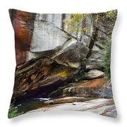 Bird Rock Waterfall Throw Pillow