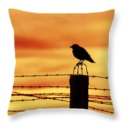 Bird Sitting On Prison Fence Throw Pillow