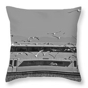 Bird Train Alviso 2 Throw Pillow