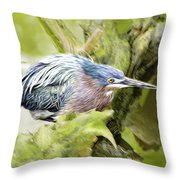 Bird Whirl2 Throw Pillow