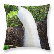 Bird - White Peacock Pose- Luther Fine Art Throw Pillow