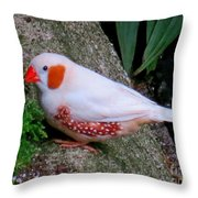 Male Zebra Finch Throw Pillow
