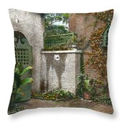 Birdhouse And Gate Throw Pillow by Terry Reynoldson