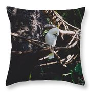 Birdie Sitting In The Tree Throw Pillow