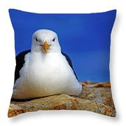Birds 10 Throw Pillow