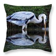 Birds 20 Throw Pillow