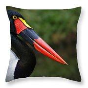 Birds 4 Throw Pillow