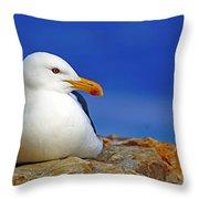 Birds 9 Throw Pillow