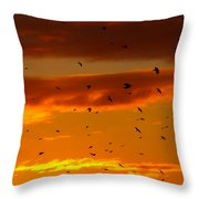 Birds Against Sunset Sky Throw Pillow
