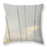 Birds And Wires Two Throw Pillow
