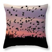Birds At Sunrise Throw Pillow