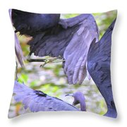 Birds - Fighting - Herons Throw Pillow